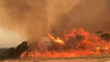 Les feux continuent de ravager l'Australie.