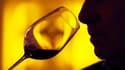 L'image de luxe associée aux châteaux du vignoble bordelais cache une réalité moins glamour : à l'exception de quelques crus mondialement connus, la masse des viticulteurs est en grande difficulté. /Photo d'archives/REUTERS/Régis Duvignau