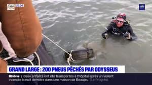 Lyon: plus de 200 pneus repêchés par l'association Odysseus ce samedi