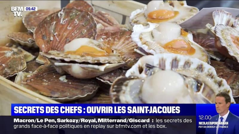 Les secrets des chefs - comment ouvrir les coquilles Saint-Jacques ?
