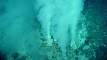 Les monts hydrothermaux, comme le Loki's Castle, sont l'habitat naturel d'organismes rares. Ici, le mont de Champagne.