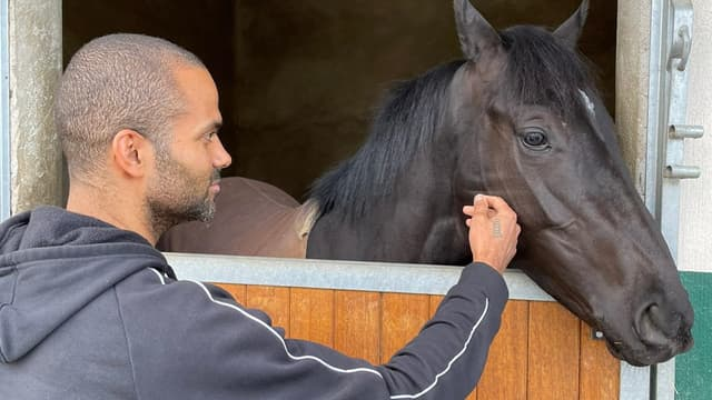 Tony Parker est le propriétaire de l'écurie Infinity Nine Horses