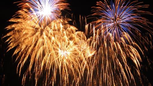 Les feux d'artifice, professionnels comme amateurs, sont particulièrement prisé le 14 juillet. (photo d'illustration)