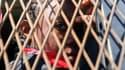 Un migrant à Tripoli. (Photo d'illustration)