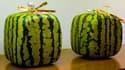 """Les """"pastèques carrées"""" (cubiques, en réalité) ne sont pas une mode moderne mais une tradition japonaise."""