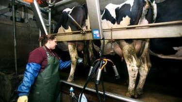 A nouveau opposés sur le prix du lait, producteurs et industriels français ont finalement trouvé mardi un accord pour le deuxième trimestre de l'année, selon le ministre de l'Agriculture Bruno Le Maire. /Photo d'archives/REUTERS/Stéphane Mahé