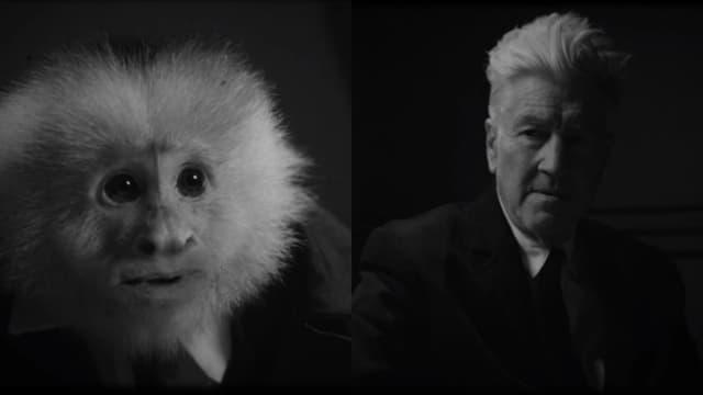 Qu'a fait Jack?, le nouveau court-métrage de David Lynch
