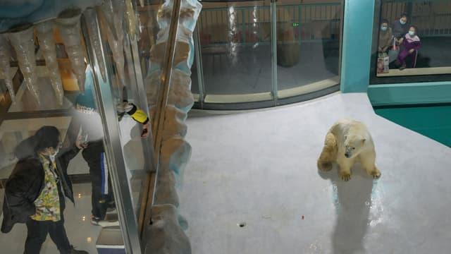 Les gens regardent un ours polaire à l'intérieur d'une enceinte dans un hôtel récemment ouvert, à Harbin, au nord-est de la province chinoise du Heilongjiang, le 12 mars 2021. (Photo d'illustration)