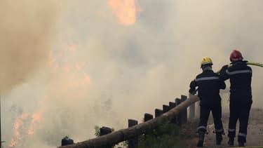 Les pompiers essaient d'éteindre le feu à l'aide d'une lance à incendie à Castagniers près de Nice le 17 juillet 2017.
