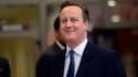 David Cameron a obtenu gain de causes sur certains points