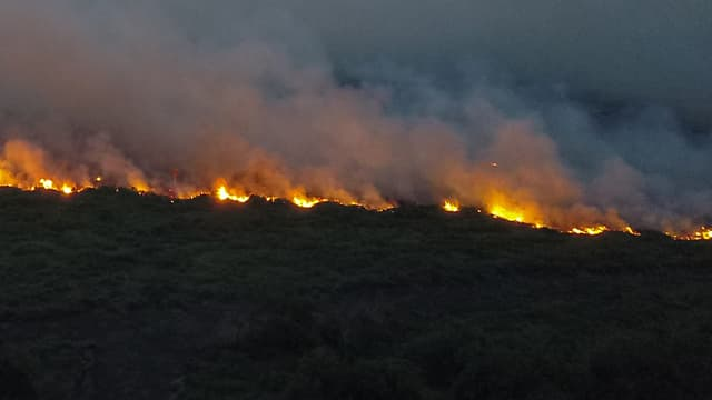 Un feu touchant une forêt brésilienne le 29 octobre 2019.