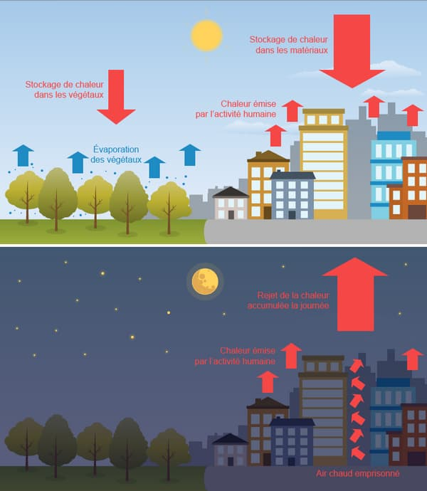 infographie îlot chaleur urbain