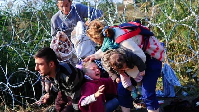 Une famille de migrants rampe sous des fils barbelés à la frontière serbo-hongroise le 27 août 2015