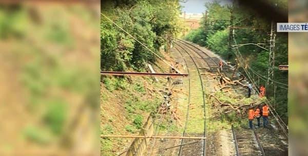 Un arbre est tombé sur la voie ferrée.