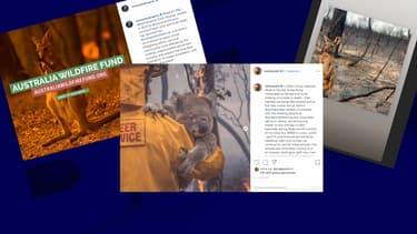 Exemples de publications de photos pour appeler les internautes à donner aux associations agissant en Australie