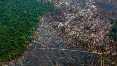 La déforestation exponentielle de la forêt amazonienne, ALTAMIRA, BRÉSIL, août 2019