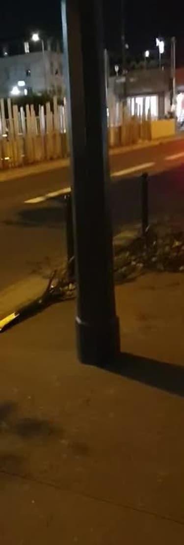 Tempête Aurore: plusieurs arbres couchés à Paris - Témoins BFMTV