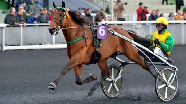 Face Time Bourbon champion d'Europe