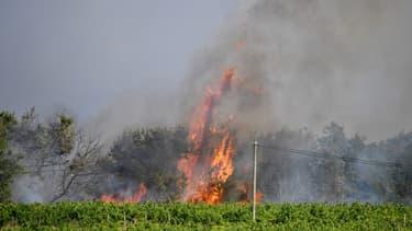 Des incendies ravagent le Gard depuis mardi