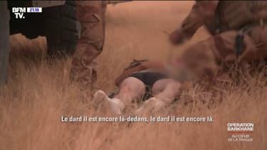 Les soldats de Barkhane doivent aussi faire face aux dangers du désert, l'un d'eux s'est fait piquer par un scorpion