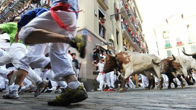Les lâchers de taureaux sont pratiqués en Espagne mais aussi dans certaines régions du sud de la France.