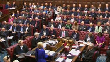 Les conservateurs sont en minorité à la chambre des Lords
