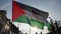 Les députés britanniques se sont prononcés pour la reconnaissance d'un Etat palestinien. Ici une manifestation à Cardiff, lors du sommet de l'OTAN en septembre 2014.