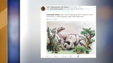 L'animal faisait approximativement douze tonnes et vivait en Afrique du Sud.
