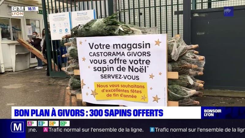 Givors: 300 sapins de Noël offerts par un magasin de bricolage