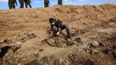 Un homme inspecte un charnier découvert par des forces kurdes en Irak et contenant des restes de membres de la communauté yézidie massacrés par Daesh, en février 2015