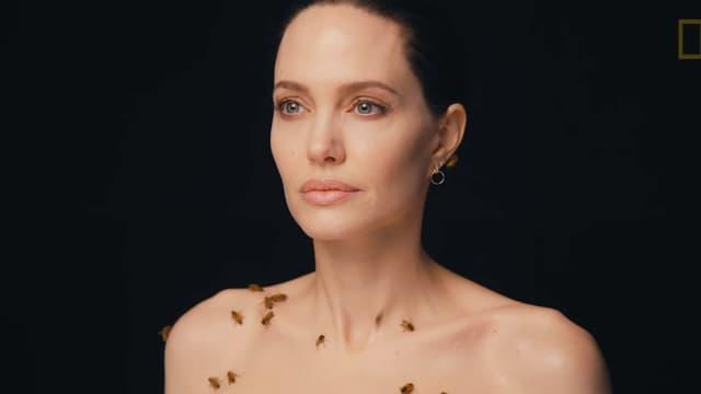"Angelina Jolie lors du photoshoot de ""National Geographic"""