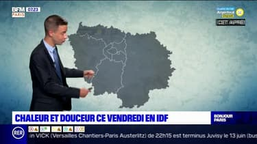 Météo Paris-Ile de France du 11 juin: Des conditions estivales