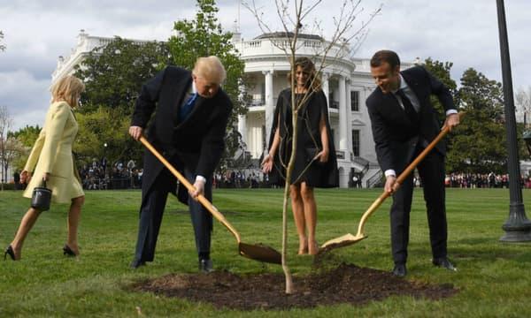 Donald Trump et Emmanuel Macron plantent un chêne français dans les jardins de la Maison Blanche, le 23 avril 2018.