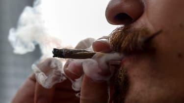 Le cannabis serait vendu dans des boutiques spécialisées, interdites aux mineurs