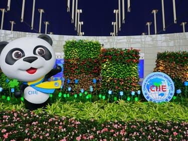 CIIE 2020 : une opportunité de coopération commerciale sino-française - Shutterstock