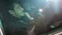 Nicolas Sarkozy à la sortie de son audition chez les juges bordelais, jeudi.