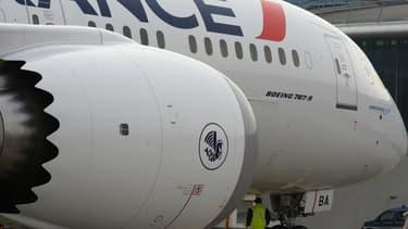 L'unique vol Paris-Cayenne ne sera pas assuré par Air France mardi.