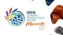 Du 3 au 11 septembre 2021, BFM Business et BFM Marseille Provence proposent un dispositif spécial en partenariat avec le ministère de la Transition écologique à l'occasion du Congrès mondial de la nature à Marseille