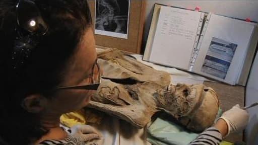 en enfant découvre une momie dans le grenier de sa grand-mère