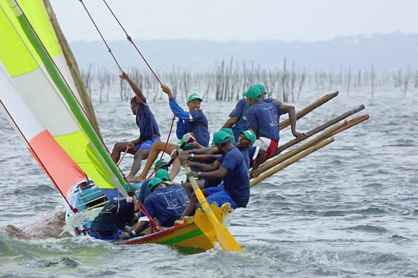 Une yole venue de la Martinique passe, le 15 août 2001 au milieu du parc à huîtres sur le bassin d'Arcachon, lors d'une régate avec des pinasses arcachonnaises.
