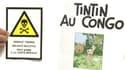 Un Groupement contre le racisme, auquel participe le Cran, s'est attaqué à Tintin au Congo, ce lundi.
