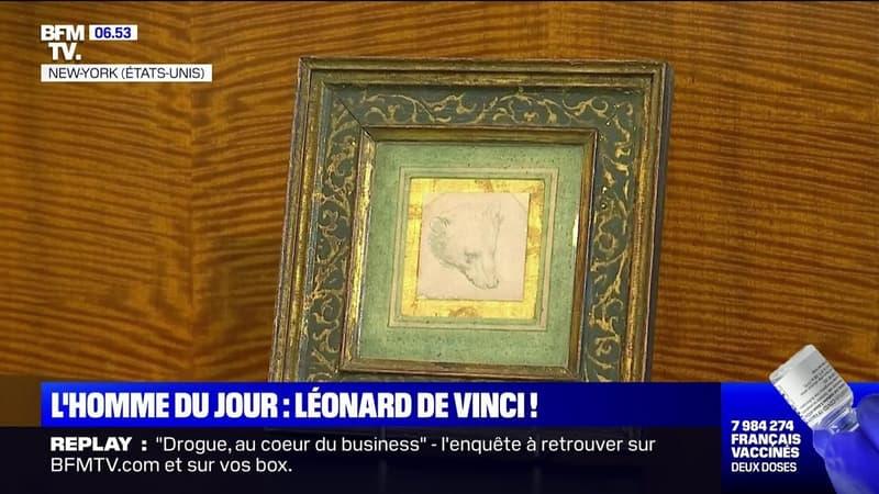 """""""La Tête d'ours"""", un dessin de Léonard de Vinci, pourrait atteindre les 16 millions d'euros aux enchères"""