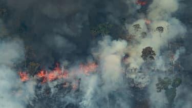 Vue aérienne des feux de forêt qui sévissent en Amazonie, ici dans l'Etat de Rondonia.
