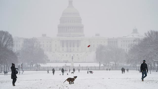 Des gens jouent avec leur chien sur le National Mall lors d'une tempête de neige le 31 janvier 2021, à Washington, DC.