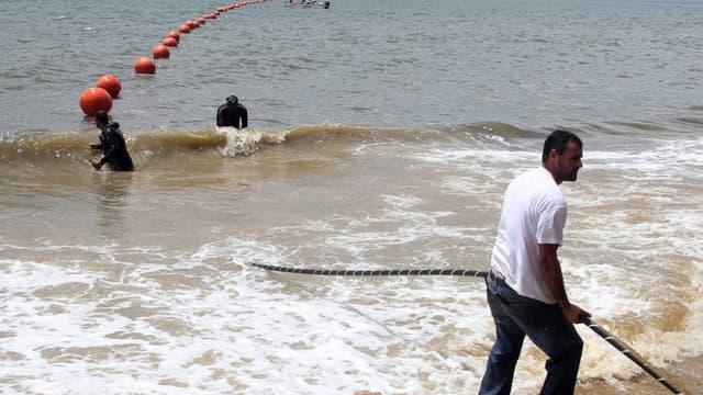 La pêche à la coquille Saint-Jacques en baie de Saint-Brieuc a été fatale au câble sous-marin Flag-1, reliant la Bretagne à l'Angleterre.