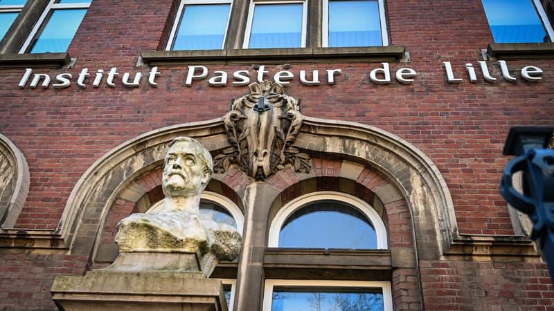 À l'Institut Pasteur de Lille, la recherche d'un médicament contre le Covid labélisée
