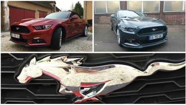 Vous êtes plutôt Mustang EcoBoost ou GT, Convertible ou Fastback?