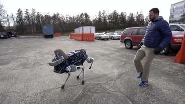 Spot, le robot chien, ne tombe pas quand il se prend un coup, mais saute de côté puis se redresse.