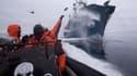 Des membres de Sea Shepherd harcelant un bateau de pêche japonais
