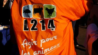 L'association de  défense des animaux L214 a publié une vidéo mettant en cause un élevage de cochons en France.